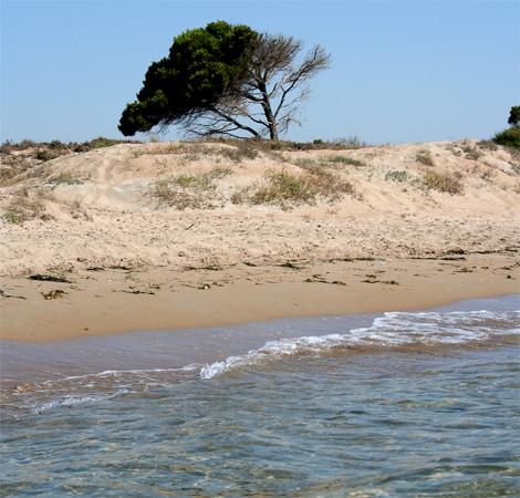 Aquí no hay playa ¡pero sí! piscinas a mares…