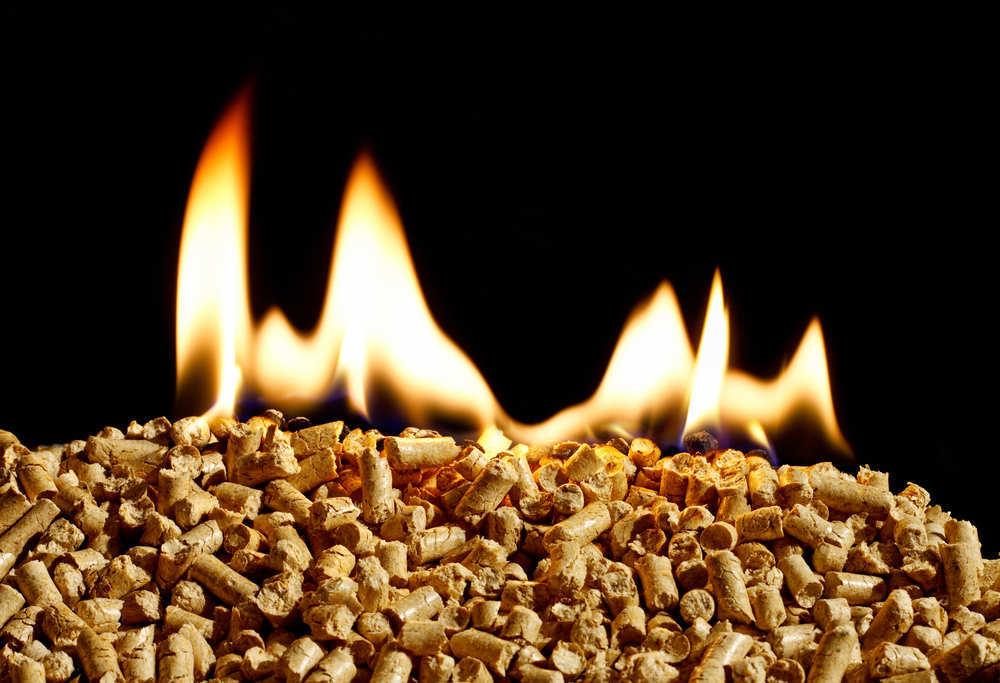 ¿Cuáles son las ventajas de poner una caldera de biomasa en tu casa?